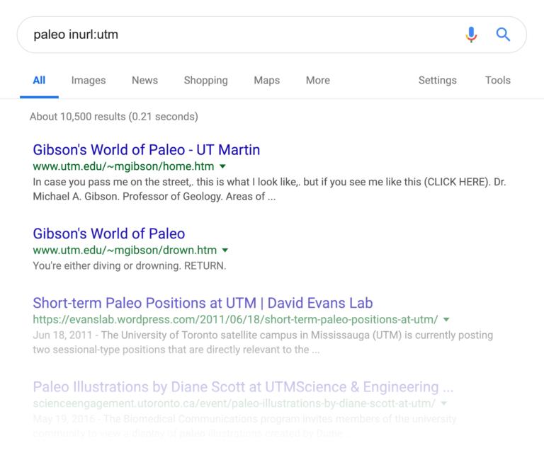 URL های داینامیک در SERP